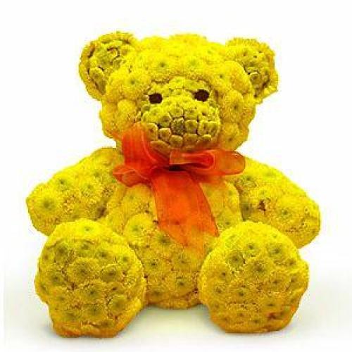 Купить на заказ Заказать Жёлтый мишка с доставкой по Богровое  с доставкой в Боровом