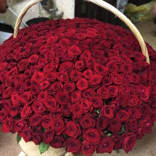 Купить на заказ Заказать 1001 роза с доставкой по Богровое  с доставкой в Боровом