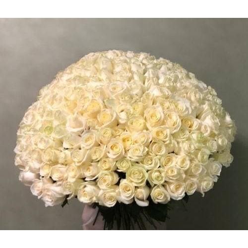 Купить на заказ Заказать 201 роза с доставкой по Богровое  с доставкой в Боровом