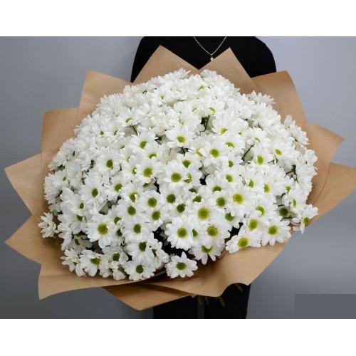 Купить на заказ Заказать 51 хризантема с доставкой по Богровое  с доставкой в Боровом