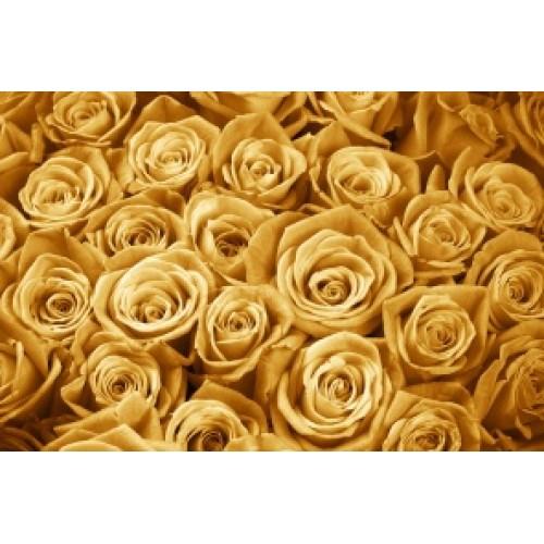 Купить на заказ Заказать Золотые розы 25 шт с доставкой по Богровое  с доставкой в Боровом