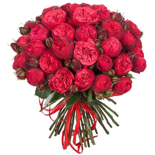 Купить на заказ Заказать Букет из 51 пионовидные розы с доставкой по Богровое  с доставкой в Боровом