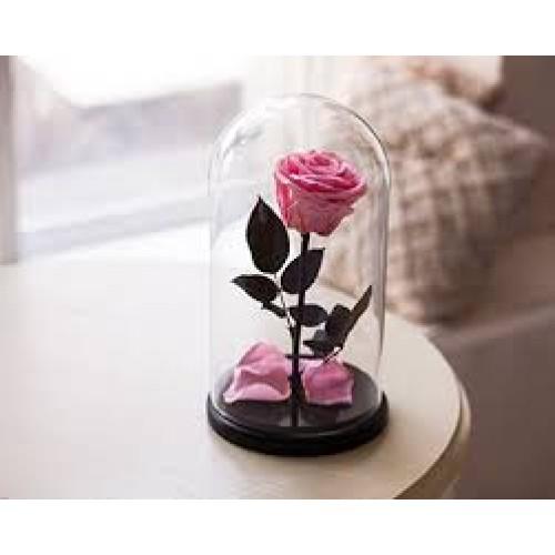 Купить на заказ Заказать Роза в колбе розовая с доставкой по Богровое  с доставкой в Боровом