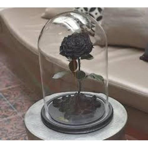 Купить на заказ Заказать Роза в колбе  черная с доставкой по Богровое  с доставкой в Боровом